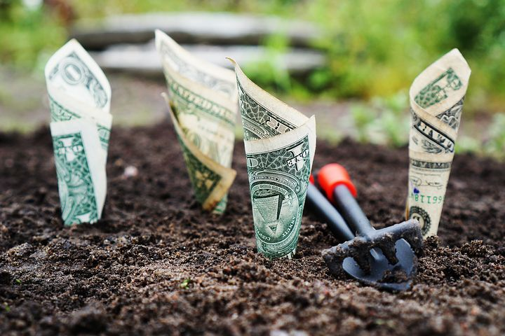 Dollar Bill planted in mud with small digging shovel