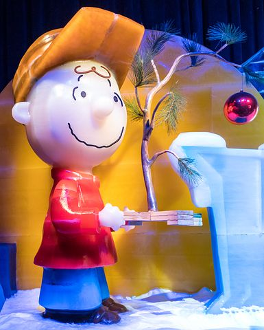Charlie brown from Peanuts