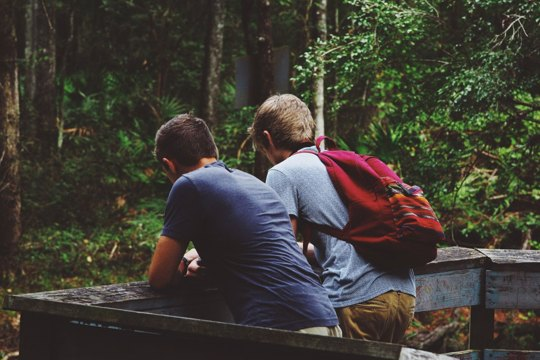 Boys hiking in forest