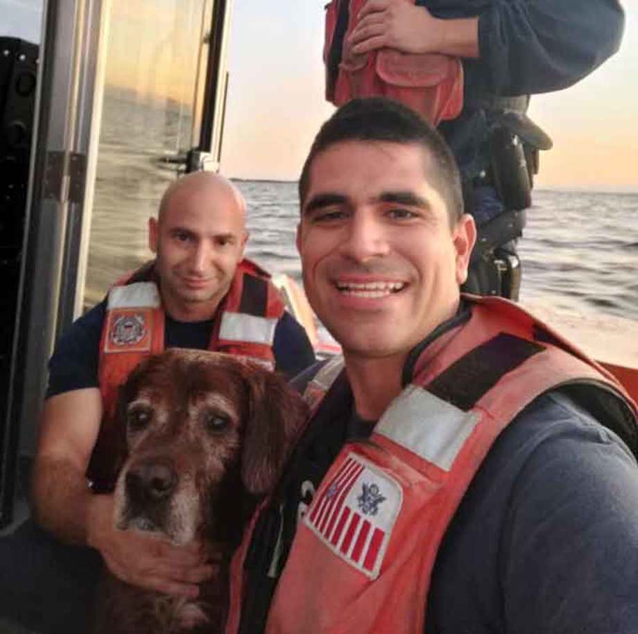Dog rescued by Coast Guard