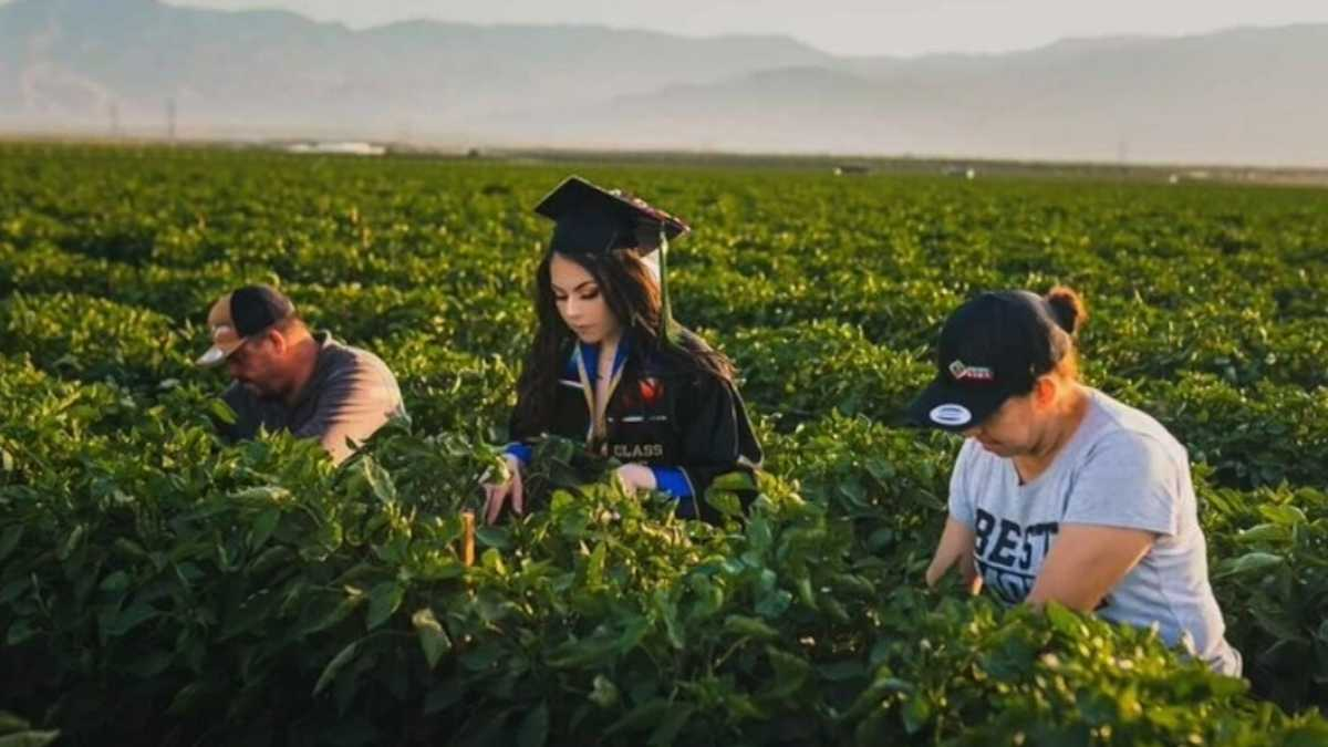 Jennifer Rocha and parents in the fields where they worked together