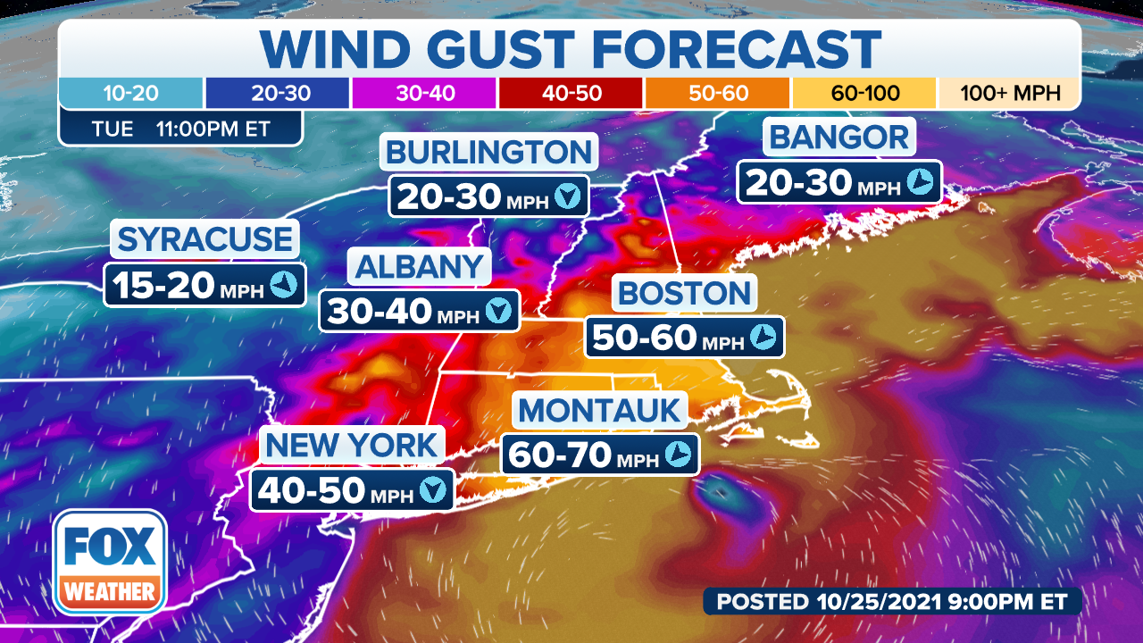 Wind gust forecast for the Northeast